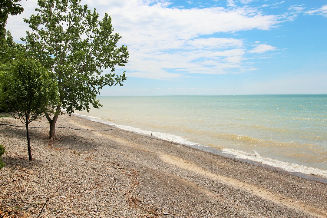 Walker Cottage - beach 2 - Wainfleet - Holiday Homes PM