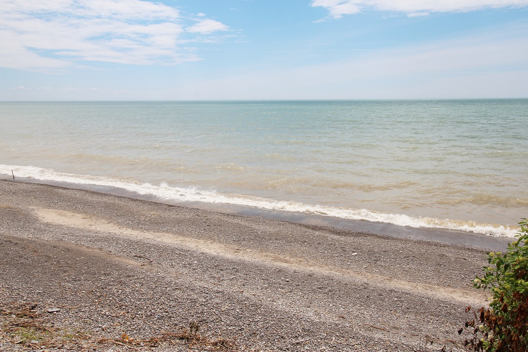 Walker Cottage - beach - Wainfleet - Holiday Homes PM