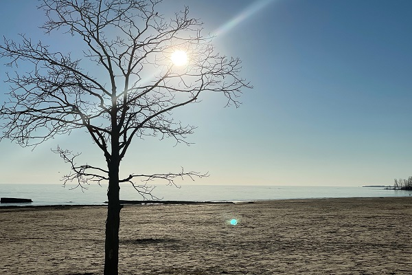 WaverlyPlace-beach-Cottage Rentals-Fort Erie-Holiday Homes Vacation Rental Property Management (600x400)